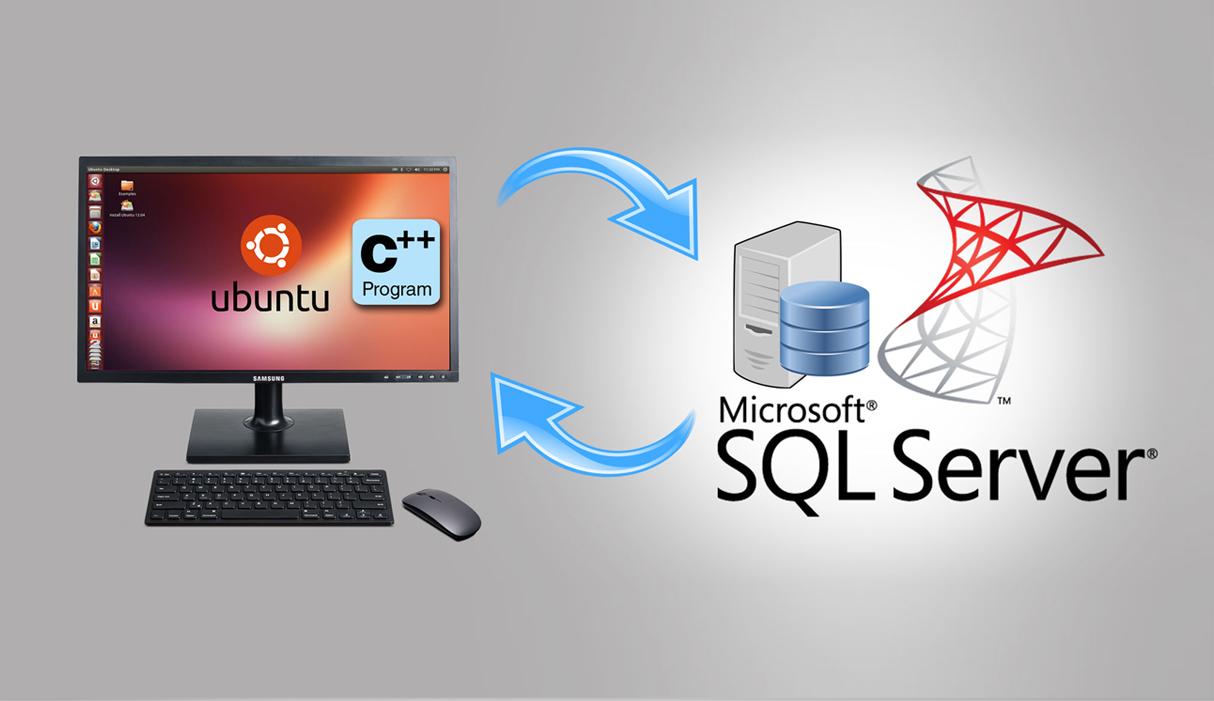 Accessing Data Stored in MS-SQL Server from Linux OS (Ubuntu) Using
